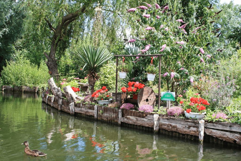 EVG à Amiens jardin flottant